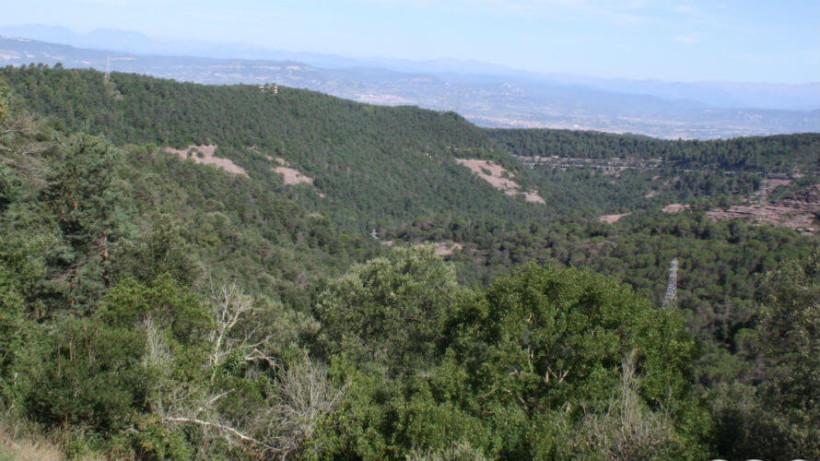 COOLTUR Turisme Cultural – Sant Julià de Vilatorta – Vistes des de Sant Julià